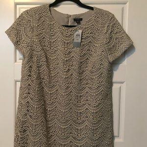 Ann Talylor gold lace dress.  Size 6 petite.  NWT